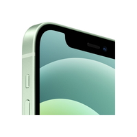 Смартфон Apple iPhone 12 256GB (Green)