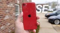 Смартфон Apple iPhone SE 2020 64GB (Red)